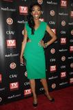 Brandy Norwood @ The TV Guide Magazine's ''2010 Hot List'' Party in Hollywood - Nov. 8 (x19)