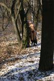 Valia in Winter Angelst4lsj2vycn.jpg