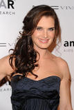 Brooke Shields, attends the amfAR New York Gala  10/02/2010