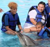 http://img239.imagevenue.com/loc448/th_37562_rihanna-dolphins-5_122_448lo.jpg